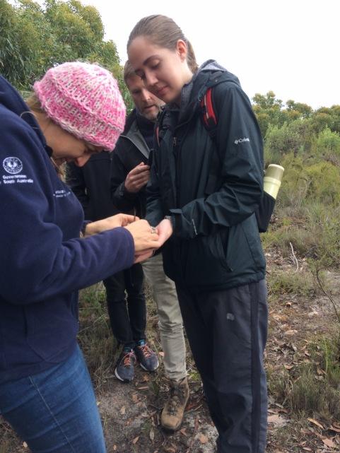 Emma M_WPP monitoring 8 June 2018 Newland Head.jpg